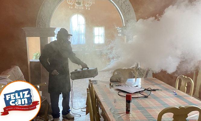 Fumigacion contra virus parasitos e insectos Área de 1m2 a 200m2