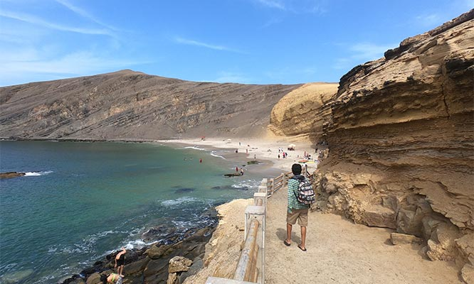 Paracas Full day de playas de la Reserva Nacional de Paracas y mas