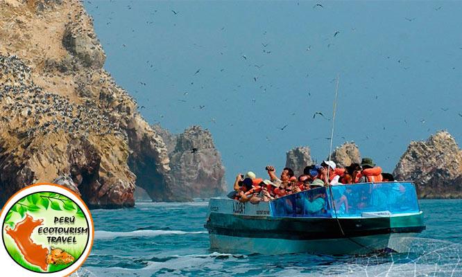 Full day Paracas - Islas Ballestas con deslizadores