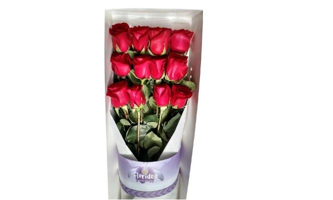 Caja de 12 rosas con follaje peluche de osito y delivery