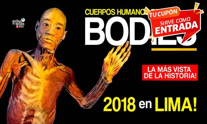 Entrada para evento Bodies exposicion de cuerpos humanos