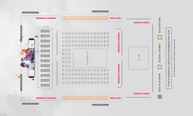 FIESTA BLANCA 2020 - Todo incluido -zona Vip o SUPER VIP Stand Up