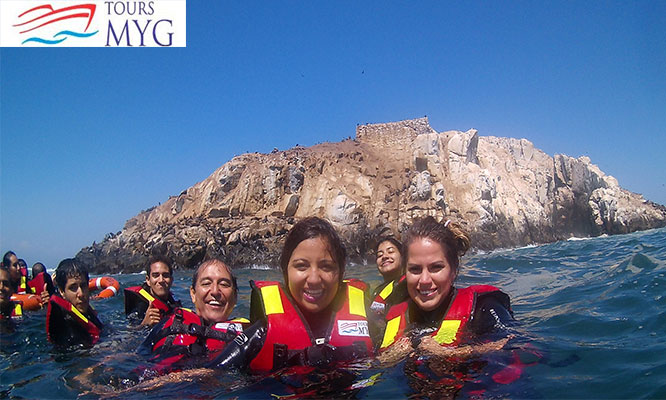 Nado con Lobos marinos con wetsuit todos los viernes Islas Palomino
