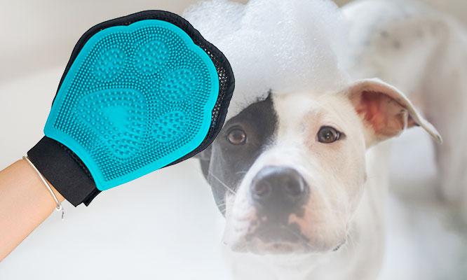 Guante de baño para mascota