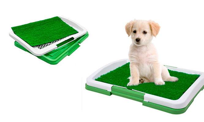 San Miguel Baño para perro o gato 3 piezas con grass artificial