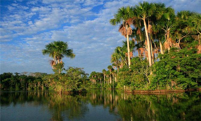 Puerto Maldonado 3D/2N en Amazon Lodge con alimentacion transporte excursiones y mas