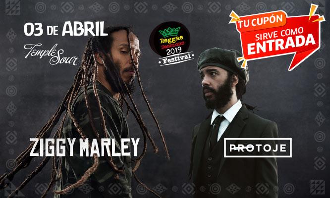 Entrada al concierto de Ziggy Marley - Zona a elegir con Work shows