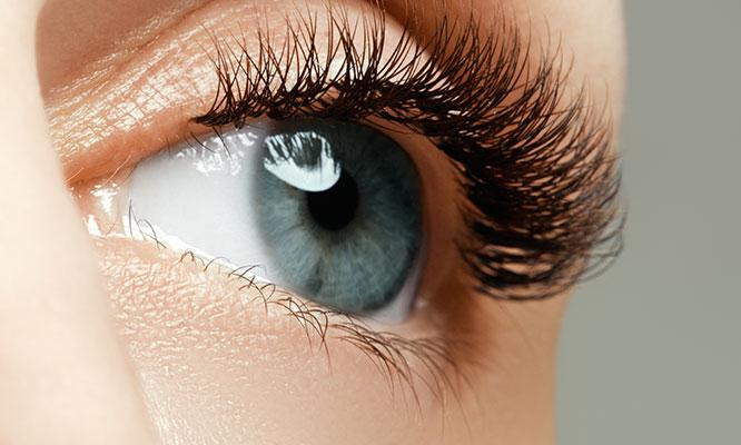 Miraflores Rizado de pestañas permanentes tinte protector planchado de cejas y mas