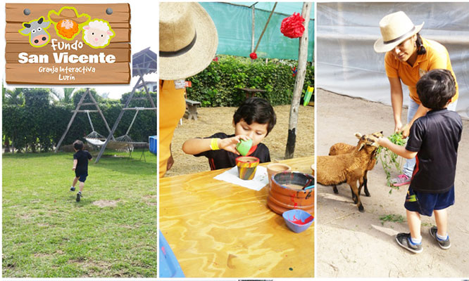 Full day guiado en el Fundo San Vicente para niño o adultos