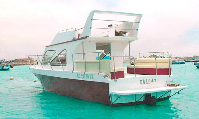 Callao-La Punta Full day en Yate nada con lobos marinos en Islas Palomino