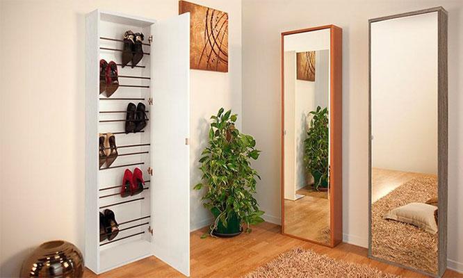 Delivery Zapatera con espejo para 10 o 20 pares 1 o 2 puertas